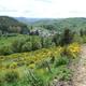 circuit GPS de rando, Le Puech - Peyrusse : Départ de la balade à Peyrusse-bas