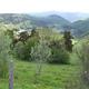 circuit GPS de rando, Le Puech - Peyrusse : Les villages de Peyrusse -haut et bas