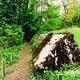 circuit GPS de rando, Le Sentier didactique des Toblerones : Sentier des Toblerones ©Région du Léman