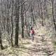 circuit GPS de vtt, Le long du Tarn vers Arthes : Peloton éclaté