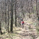 trail GPS : outdoor bike, Along the Tarn towards Arthes : Peloton éclaté