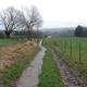 trail GPS : hike, Les sentiers de Braine-le Château - Boucle Nord :