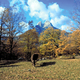 circuit GPS de rando, Catalogne - Les Chevaux du vent - Du refuge de Sant Jordi au refuge de Rebost : NAT - Pir. - Pedraforca - (© Fons Archive National de la Cat