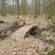 trail GPS : hike,outdoor bike, La promenade de Beauwelz :