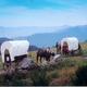 circuit GPS de rando,vtt,cheval, Boucle Le Bouteirou - Mont Gerbier de Jonc – Etape 1 : attelage rando ©Le Bouteilou