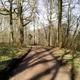 circuit GPS de rando, Promenade dans le Bois Jacques :
