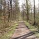 trail GPS : hike, Promenade dans le bois de Yernissaux :