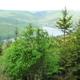 circuit GPS de rando,vtt, La Vallée de la Faux et les Roches de l'Empereur : Vue sur le Lac de Witacker