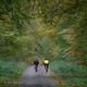trail GPS : outdoor bike, Rando du Donon 99 - 11km : © Yvon Delbecque