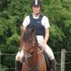 trail GPS : horse, Chalet Fauvilers : Normandy au départ