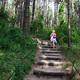 trail GPS : hike, Mont St Frieux - Côte d'Opale : Une montée