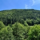 trail GPS : hike,outdoor bike, Les Contours de Peternit près de Guebwiller : © Lionel Levasseur -