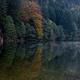 trail GPS : hike, Circuit des Hirschsteine : © Slava Trusevich