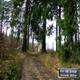 circuit GPS de vtt, Lumes - Le loup : Col du Loup