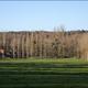 circuit GPS de rando,vtt,cheval, Circuit des Moulins et des Lavoirs  -  Livet-sur-Authou : Eglise de Livet-sur-Authou © Flickr - david rombaut
