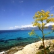circuit GPS de rando, Agriates + Cap Corse en 7 jours de randonnée : Plage Lodo ©etnofotografie Panoramio
