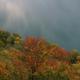 circuit GPS de rando, Le Jura d'Ouest en Est sur le GR 559® : Lac de Chalain en automne ©guipetitjean Panoramio