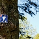 trail GPS : hike, Saint André d'Allas :