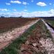 circuit GPS de rando, Saint-Cybranet  :