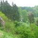 trail GPS : hike, Balade transfrontalière - De Beaumont à Reugnies : La chapelle Saint-Julien dans son cadre de verdure