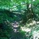 circuit GPS de rando,course à pied, Du Lac de St Jean de L'Union à Saint Geniès Bellevue par le ruisseau de Pichounelle :