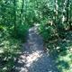 circuit GPS de rando,course à pied, Le Bois de Lespasié au dessus de Labastide Saint Sernin : Des sentiers inconnus de IGN...