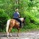 trail GPS : horse, Boucle des Balcons des Pyrénées - La Bastide-de-Sérou - Saurat : © Jimmy Lopes