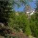 circuit GPS de rando, Traversée du Mercantour – Gite du Boréon – La Madone de Fenestre (1908m) : Mercantour ©beff06 Panoramio